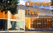 Oedipus Rem: Rem Koolhaas at IIT